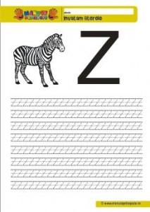 Z - 001