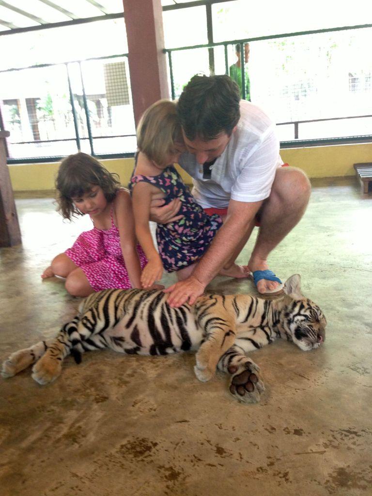 Thailanda – Ziua 39 – Chiang Mai – Tigri, Maimu, Fluturi si Umbrele