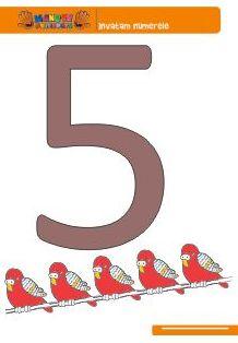Numarul 5