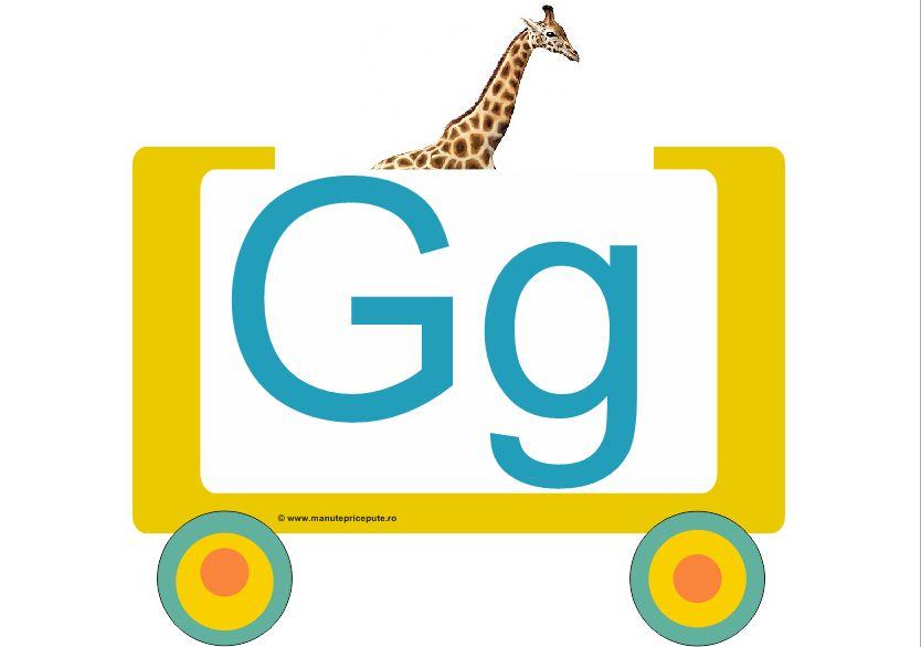 Litera G