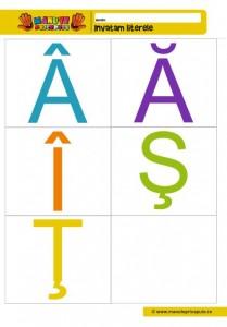009 - fise cu litere de tipar diacritice