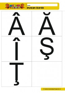 010 - fise cu litere de tipar diacritice