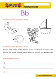 B - 005 - litere de tipar