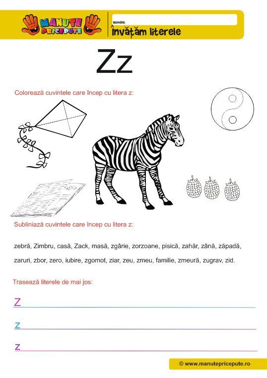 Litera Z