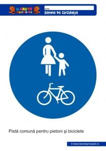 019 - Semne de circulatie pentru copii