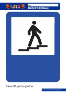 021 - Semne de circulatie pentru copii
