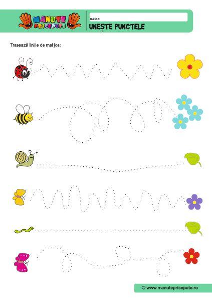 Semne grafice