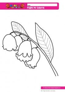 006 - Pagini de colorat cu flori - Lacrimioara