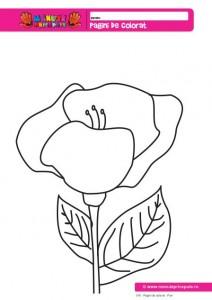 016 - Pagini de colorat - Flori