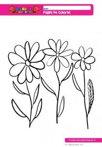 017 - Pagini de colorat - Flori