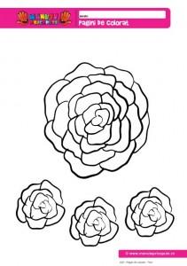 022 - Pagini de colorat - Flori