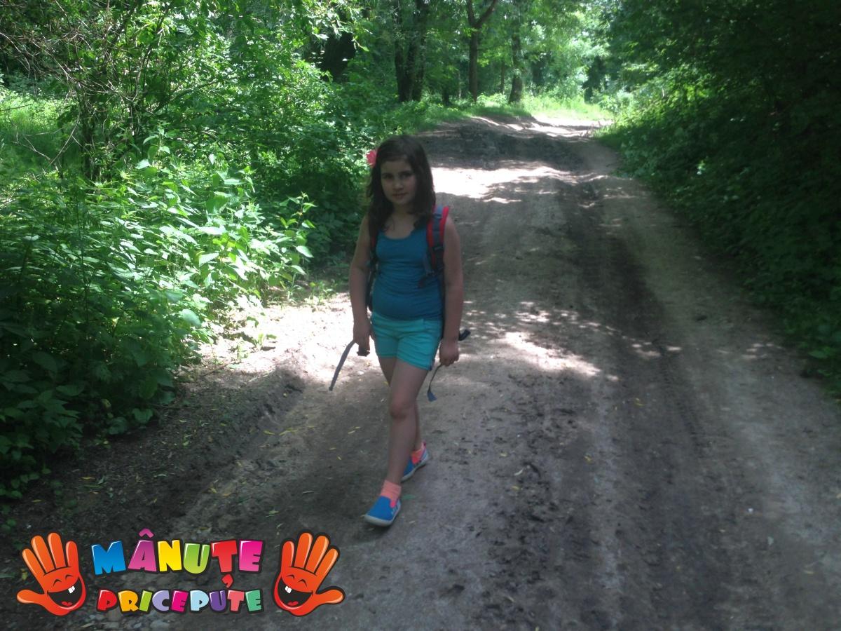 Plimbare prin Cheile Baciului
