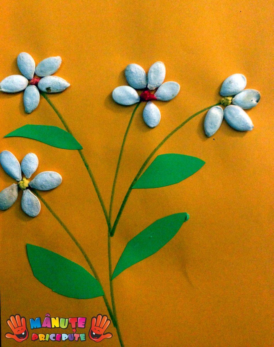 Flori din semințe de dovleac