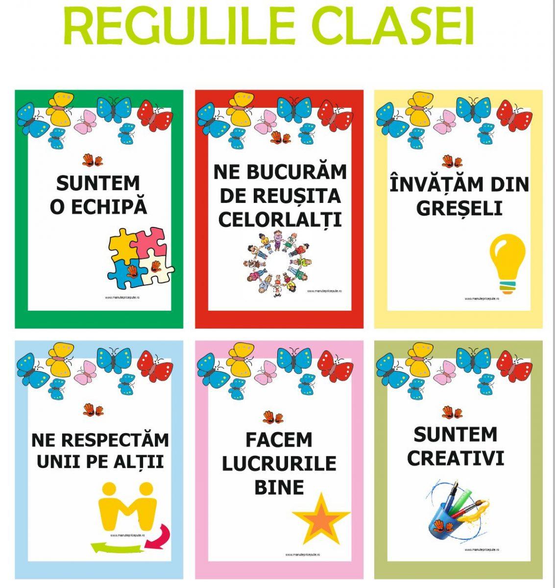 Regulile clasei sau grupei fluturașilor
