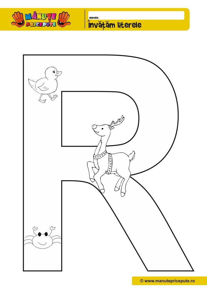 Litera R