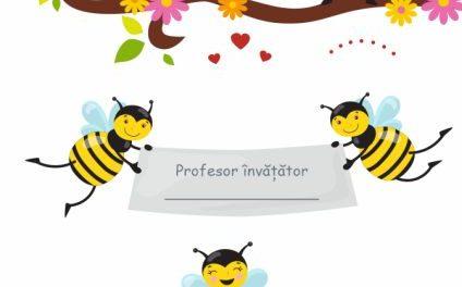 Clasa albinuțelor – afiș