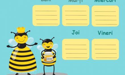 Clasa albinuțelor – orar