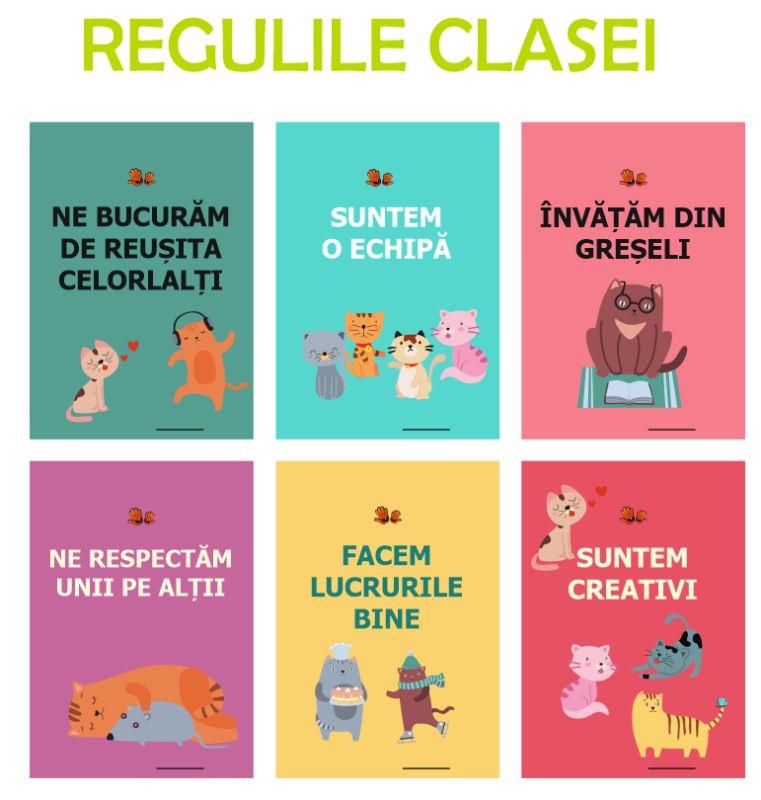 clasa fluturasilor - regulile clasei