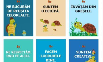 Clasa broscuțelor țestoase – regulile clasei