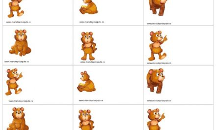 Clasa ursuleților – ecusoane